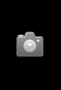 Schiefer-Herz gross