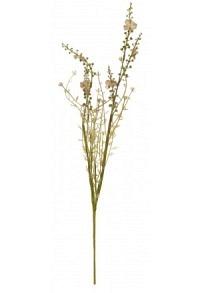 Blume brauntöne